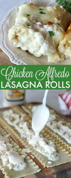 Chicken Alfredo Lasagna Rolls! This is a dinner the whole family will love!