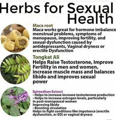 Sexual wellness for men and women is really vital to promote good and wellness connection. Discover manner ins which we can improve both males and females sexual wellness. Natural Health Remedies, Home Remedies, Herbal Remedies, Ginger Juice Benefits, Raise Testosterone, Fertility Help, Home Remedy For Headache, Menopause Symptoms, Hormone Imbalance