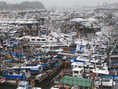 초강력 태풍 제16호 산바 (SANBA)가 북상하여 전남 여수인근으로 상륙할 것으로 예보되고 있는 16일 전남 여수 국동항에는 수백 척의 어선들이 태풍을 피해 대피하고 있다. <박영철 기자>   The 16th typhoon SANBA is going the north. Hundred fishing boats are evacuating to Yeosu harbor.