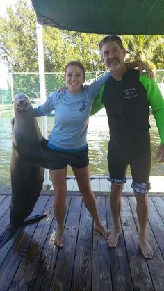 The look on that seal's face lol