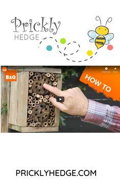 How to create a wildlife friendly garden Hedges, Children, Kids, Wildlife, Create, Garden, Young Children, Young Children, Boys