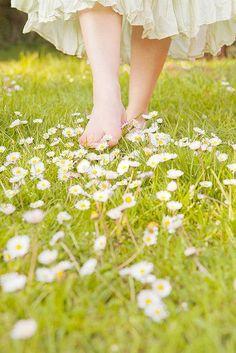 walking in daisies