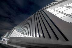 Santiago Calatrava's Museum of Tomorrow in Rio de Janeiro