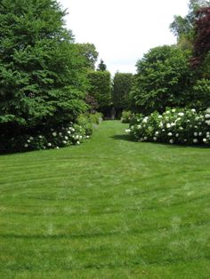 Lawn Labyrinth