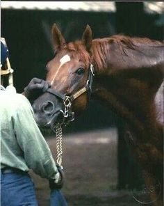 Secretariat, my favorite race horse of all time