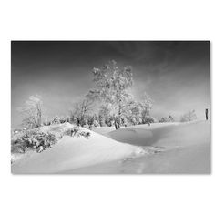 """Latitude Run Dressed For Winter B&W Photographic Print on Wrapped Canvas Size: 12"""" H x 19"""" W x 2"""" D"""