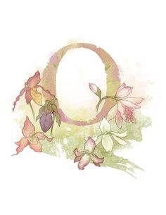 Letter O Orchid - Part of an alphabet/initials series featuring natural objects such as flowers, fruits, minerals and animal elements. Printable PNG file (300 DPI/8.5 x 11) of my own original mixed media illustration. Other letters available: Acorn - Azalea - Ammolite - Bur - Conch