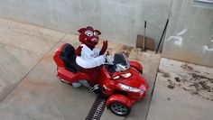 Every Minor League Baseball Mascot in Texas, Ranked | Texas Monthly #5 Scout - Grand Prairie AirHogs