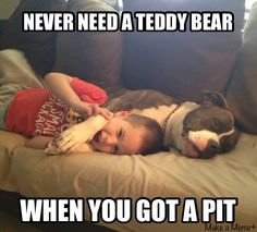 When you've got a PitBull #pitbulls