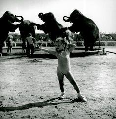 Stanley Kubrick. «The world's biggest spectacle : a circus run by a family», 1948. Il réalise une série de photos consacrée au cirque.  Courtesy Museum of the City of New York, Look Magazine Archive
