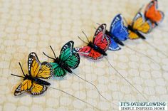Colorful Butterflies 1, Created by ItsOverflowing