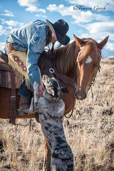 Australian Cattle Dog and Cowgirl. (Wind in the Willows Ranch) Foto Cowgirl, Cowgirl And Horse, Cowboy Art, Horse Love, Western Riding, Western Art, Westerns, Looks Country, Book 15 Anos