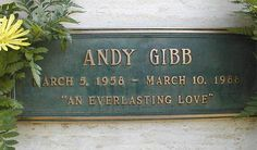 Andy Gibb - English singer, songwriter, performer and teen idol. He was the younger brother of the group Bee Gees, Barry, Robin and Maurice Gibb.