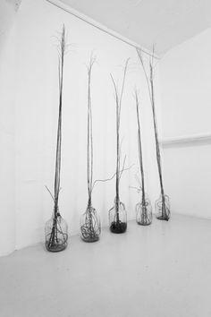 vase, branches
