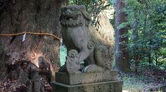 https://flic.kr/p/sW7pLY | 上田神社「阿」