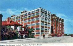 Circa 1935 ~ POSTCARD ~ Quaker Oats Peterborough Ontario, Peter Robinson, Places Of Interest, Multi Story Building, Canada, Memories, Vintage, Memoirs, Souvenirs