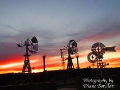 windmill photos | Windmill Museum in Lubbock, TX | Photos