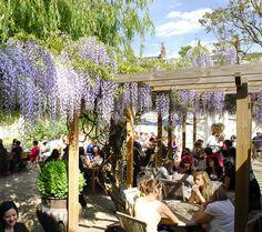 The Albion pub garden Islington