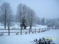 Beautiful snow in Estacada.