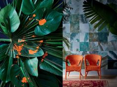 We bring you the 2018 Plascon Colour Forecast 2