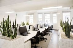 Best open plan inspiration images open plan office spaces