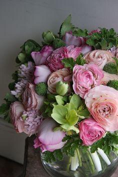 ranunculus,rose,hyacinth,helleborus