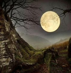 .perfect moonlight fitting into hills! Beautiful!!