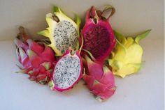 Bij Bud Holland nu beschikbaar 3 soorten Pitahaya / Dragonfruit.
