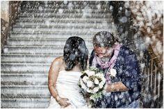 www.altrefoto.com