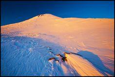 Peak  by Zsolt Andras Szabo