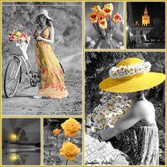 Yellow em destaque