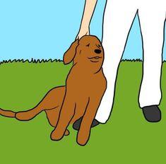 Se il tuo cane ti lecca i piedi, ti sta mandando dei segnali | Bigodino