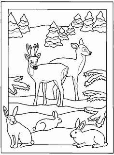 Djur Målarbilder för barn. Teckningar online till skriv ut. Nº 75