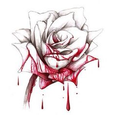 Rose Drawing i want a rose tattoo on my shoulder but i want it to be dripping red sorta like this because i love alice in wonderland Rose Drawing Tattoo, Drawing Eyes, Tattoo Drawings, Drawing Sketches, Painting Tattoo, Drawing Of A Rose, Cool Rose Drawings, Art Drawings, Drawing Style