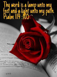 Psalm 119 :105 KJV