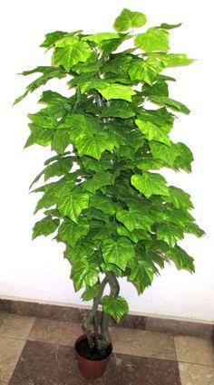 150 cm-es szőlőleveles, dekorációs fa Herbs, Herb, Medicinal Plants