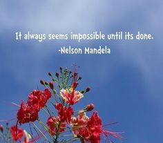 Nelson mandela quotes and sayings