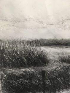 'Looking across the fields at grasses' by Ellen Watts. Drawing in graphite on cartridge, Fabriano Some torn paper collage; scratched, scraped and torn with a knife of the surface. Size: 59cm x 80cm