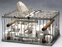 Marcel Duchamp. Why Not Sneeze Rose Sélavy?. 1921/64. Readymade: 152 marble cubes in the form of sugar cubes with thermometer and cuttlefishbone in a birdcage. 12.4 x 22.2 x 16.2 cm. Private collection.