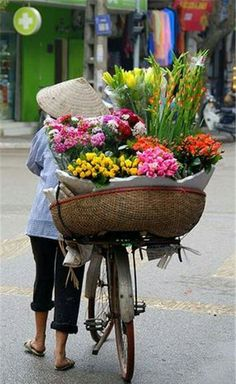 As a well known tour operator in Vietnam, we offer a large number of vacation and holiday option throughout south east of Asia. For the best itinerary for Vietnam, please contact us 987 666 today. Hanoi Vietnam, Vietnam Travel, Flower Power, People Around The World, Around The Worlds, Beautiful Flowers, Beautiful Pictures, Foto Poster, Buch Design