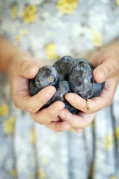 Fresh picked plums by Berta..., via Flickr
