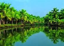 Get detailed information on top tourist destinations and Places to visit in Kerala. Kottayam, Munnar, Kochi, Backwaters, Hill Stations are top tourist places to see in Kerala. Kerala Travel, Kerala Tourism, India Travel, Tourism India, Travel Tourism, Sri Lanka, Kerala Backwaters, Kovalam, Image Nature