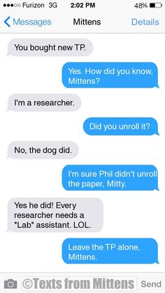 NEW Daily Mittens: The Researcher Edition  More Mittens: http://textsfrommittens.com/  Order the Mittens book: http://www.amazon.com/Texts-From-Mittens-Unlimited-Afraid/dp/0373893221