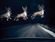 Mercedes-Benz: Reindeer in Headlights repinned by www.BlickeDeeler.de