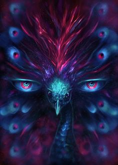 All seeing peacock