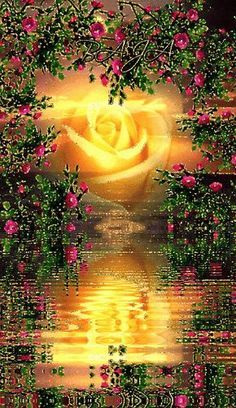 Beautiful Yellow Rose glowing instead of the sun with flowers. Beautiful Flowers Wallpapers, Beautiful Rose Flowers, Beautiful Nature Wallpaper, Beautiful Moon, Love Wallpaper, Beautiful Landscapes, Rose Flower Wallpaper, Flowers Gif, Beautiful Love Pictures