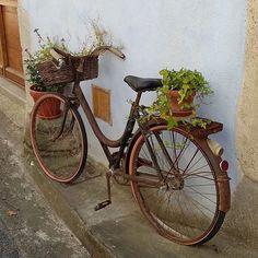 Souvenir from #france #garden#bike #repurposed