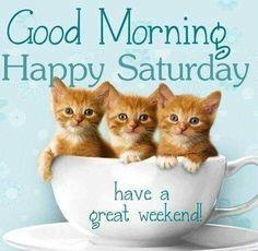 Saturday Morning Quotes, Good Morning Happy Saturday, Good Morning Sister, Happy Weekend Quotes, Morning Gif, Sunday Quotes, Morning Humor, Daily Quotes, Saturday Greetings