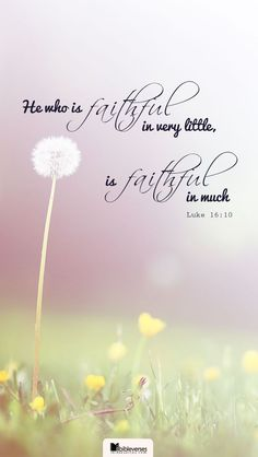 Luke Something that should inspire me everyday to be content. Chalkboard Bible Verses, Bible Scriptures, Bible Quotes, Love The Lord, Gods Love, Christian Life, Christian Quotes, Luke 16 10, New Testament Books