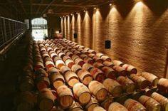 wijnkelder zuid-afrika